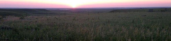 just another beautiful sunrise on the Konza